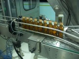 glss bottle conveyor