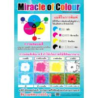 Miracle Of Colors Educational Posters EP018