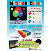 Miracle Of Colors Educational Posters EP019