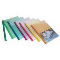 Flat File Folder with Swing Clip Lock A4 FS206