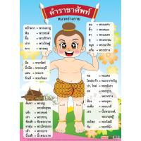 Thai Royal Words Parts Of Body Educational Posters EP150