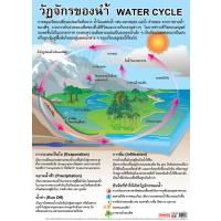 Water Cycle Educational Posters EP188
