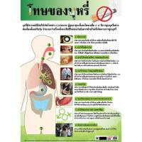 Diseases Caused by Smoking Paper Posters EQ130