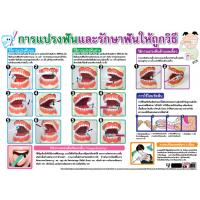 Brushing teeth and Dental Care Educational Paper Posters EQ129