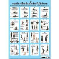 Body Stretching Exercises Paper Poster EQ070