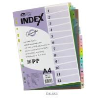 12 Tabs Plastic Index Divider with Numbers A4 DX653
