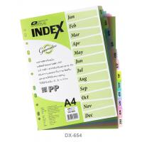 12 Tabs Plastic Index Divider with Monthly A4 DX654