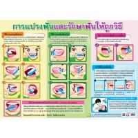 Taking care of your teeth Educational Paper Posters EQ283