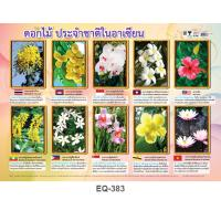 ASEAN Flower Paper Posters EQ383