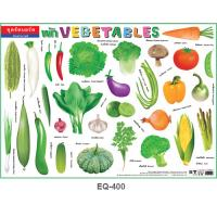 Vegetables Vocabulary Educational Paper Posters EQ400