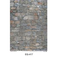 Texture of the stone wall Paper Posters EQ417