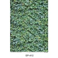Green leaf Texture Plastic Posters EP412
