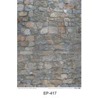 Texture of the stone wall Plastic Posters EP417