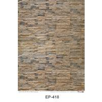 Texture of Sand Stone Plastic Posters EP418