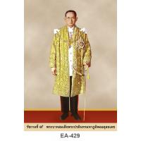 Portrait Of His Majesty The King Rama IX A4 EA-429
