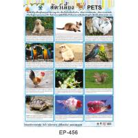 Pets Plastic Posters EP456