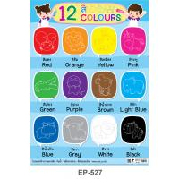 Learning 12 Colors Plastic Poster EP-527