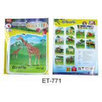 Terrestrial Animals Plastic Flash Cards for Board Displayed ET-771