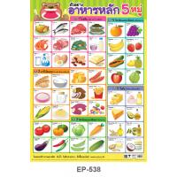 Five Main Food Groups Plastic Posters EP-538