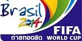 brazil fifa 2014