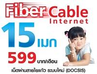 fiber cable docsis