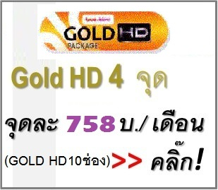 gold hd package