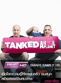 smart family hd package