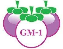 ประโยชน์ของสารสกัด GM-1 ในมังคุด