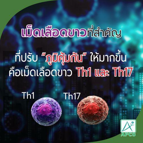 สร้างภูมิคุ้มกันหให้มากขึ้นเม็ดเลือด TH1 TH17