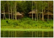 BanSuan ThaveechaiPhaphum Resort : บ้านสวนทวีชัยผาภูมิ กาญจนบุรี