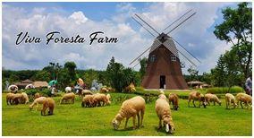 Viva Foresta Farm Chanthaburi : วีว่า ฟอเรสต้า ฟาร์ม จันทบุรี