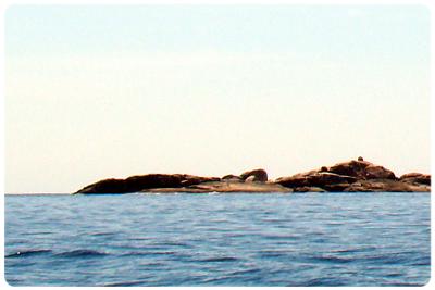 เกาะปูเลา