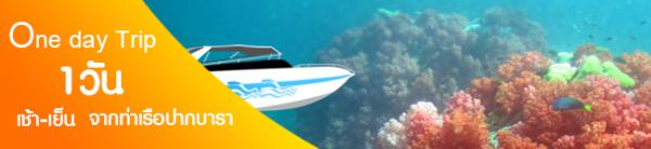 ไปกลับ จากท่าเรือปากบารา พร้อมชมปะการัง