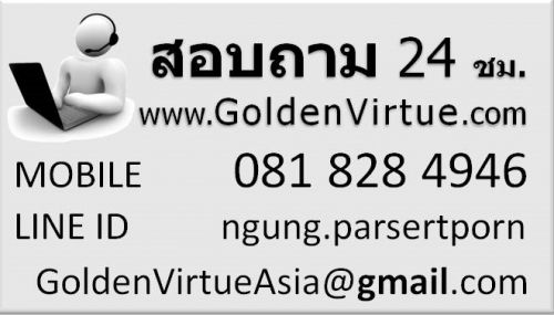 contact.goldenvirtue