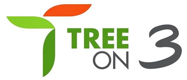 Tree on 3 พระราม 3