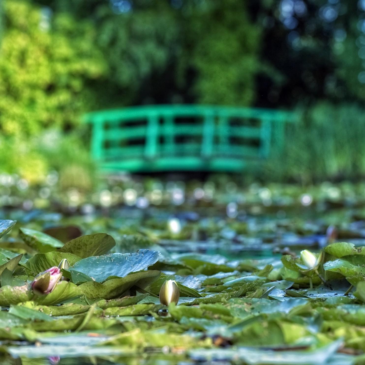 Claude Monet's House & Garden, Giverny, France