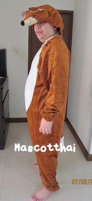 ชุดแฟนซีผู้ใหญ่ขนาด 180 ซม
