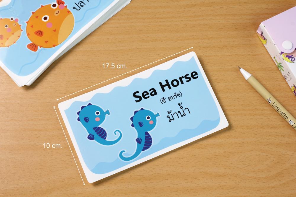 บัตรคำศัพท์2ภาษา#ET-327 สัตว์ทะเลชุด1