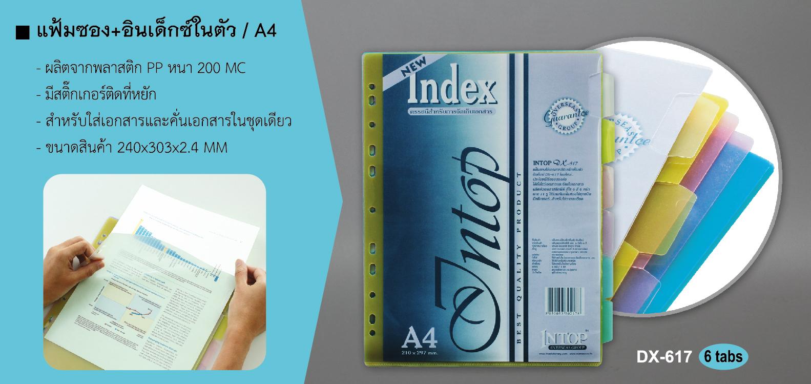 plastic, index, divider, file, ที่คั่นแฟ้ม, ที่คั่นเอกสาร, อินเด็กซ์