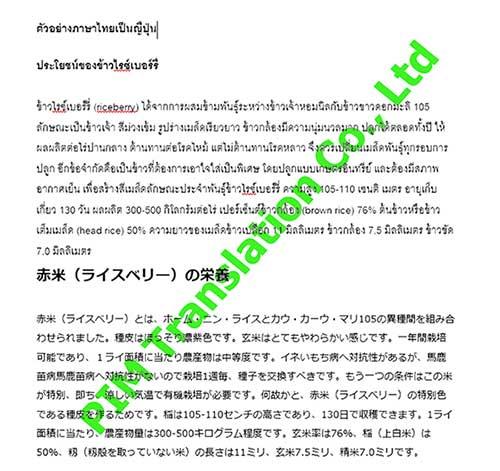 รับแปลภาษาญี่ปุ่น ผลงานแปลไทยเป็นญี่ปุ่น