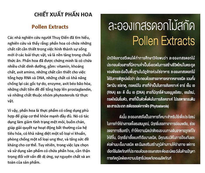 รับแปลภาษาเวียดนาม แปลภาษาเวียดนามโดยเจ้าของภาษา