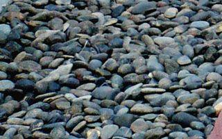 หินแม่น้ำ สีดำ