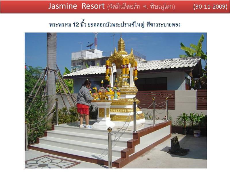jasmine resort จ. พิษณุโลก