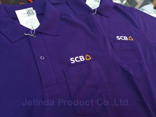 SCB Polo2