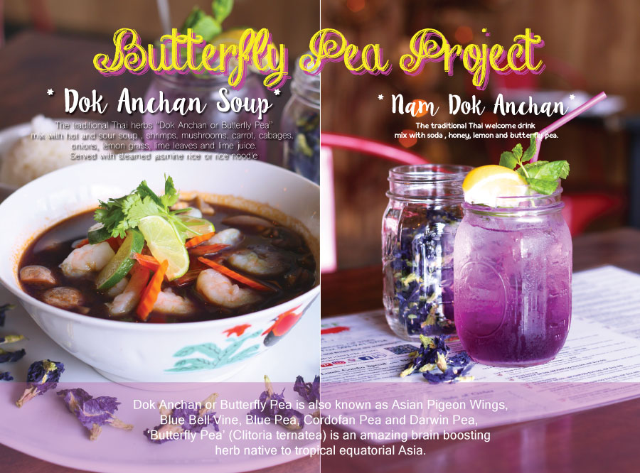 Butterfly Pea Soup