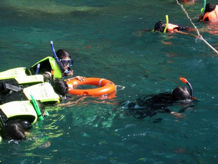 ทีมทะเลตรังมารีน่า พาชมปะการังสีที่เกาะม้า