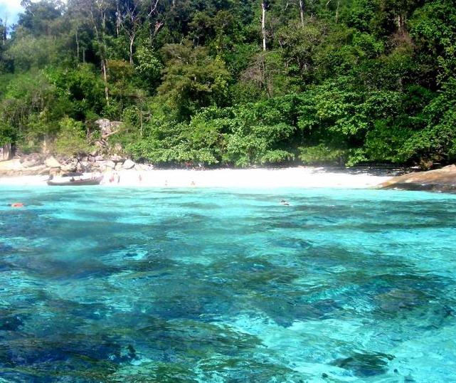 ปะการังหน้าเกาะดง