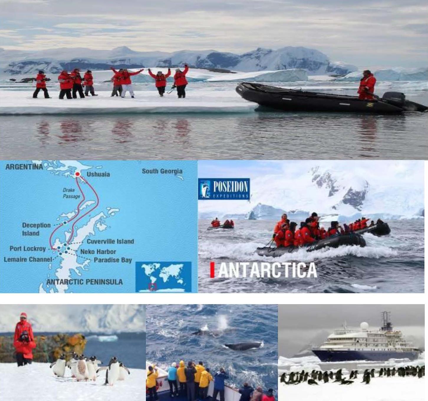 ���������š�� Antarctica