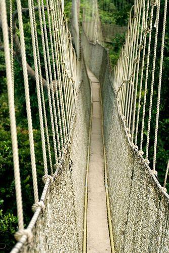 Kakum National Park's Canopy Walkway