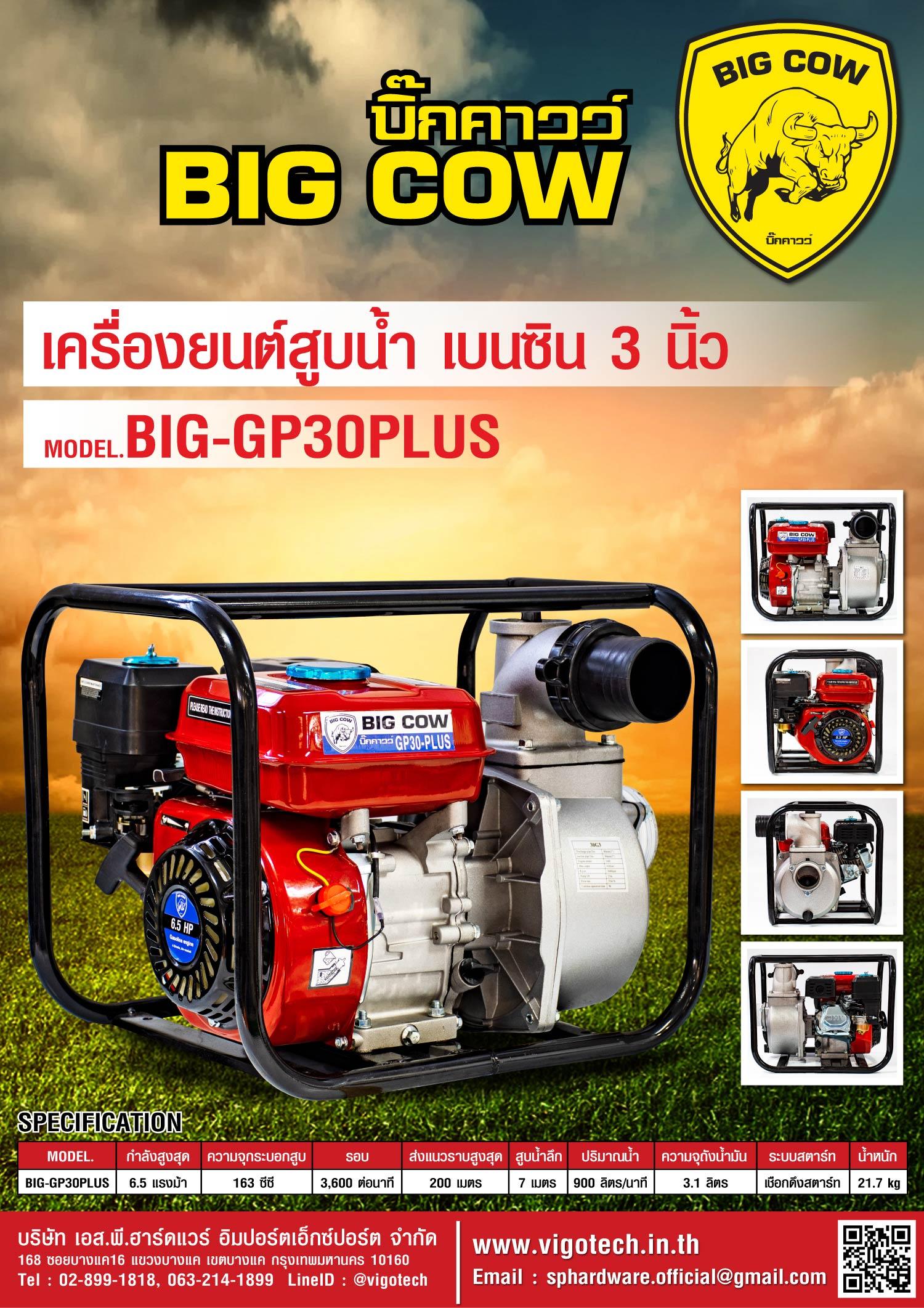 BIGCOW เครื่องยนต์สูบน้ำ